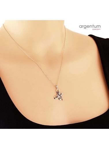 Argentum Concept Zirkon Taşlı Gümüş Rose Kelebek Kolye Renkli